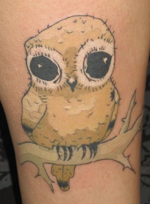 kristin-young-owl