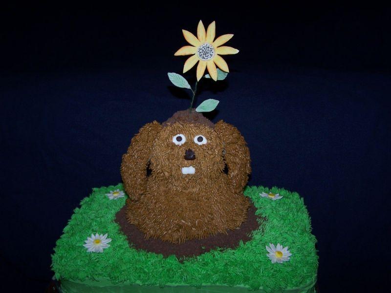 pin groundhog day cake on pinterest