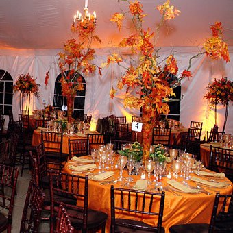 Halloween Countdown Halloween Wedding Decor Part 1 Shewalkssoftly