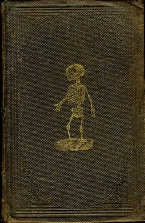 Beautiful Book Covers Tumblr ~ Vintage book covers spooky beautiful antiques