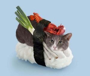 Neko-Sushi-Japanese-Sushi-Cat-by-Nakimushi-Peanuts-8