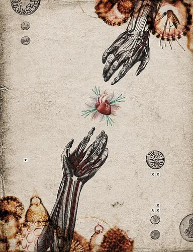 Biological (by Randy Mora)