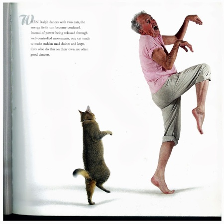 Dancing with Cats 3