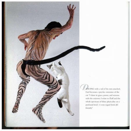 Dancing with Cats 4
