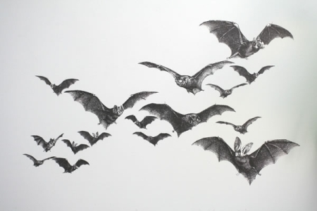 Bats-Wall-Decal_20518-l