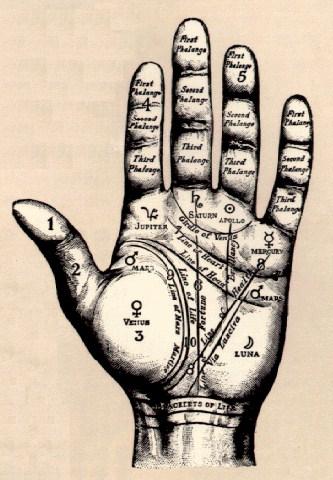 palmprint-gif