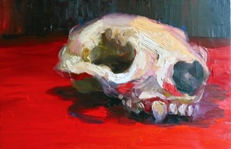 vole_skull_study_by_katmannel-d4wzef4