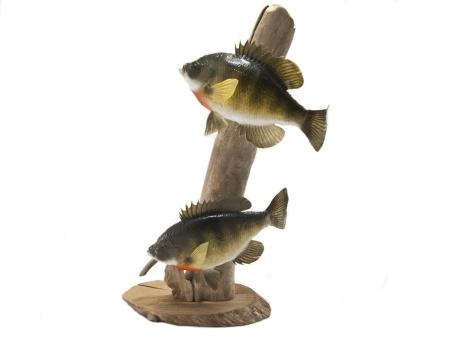 Taxidermy_Fish__99558.1411717257.1280.1280