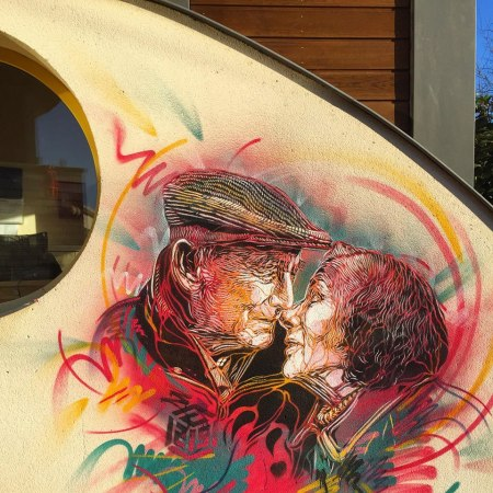 Street-Art-by-C215-in-Fontenay-aux-Roses-France
