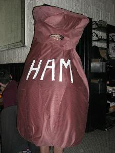 diy ham costume